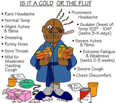 cold vs flu symptoms
